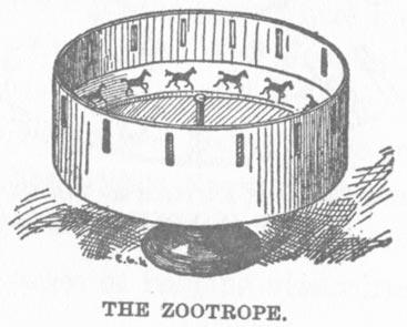 13 zootropos